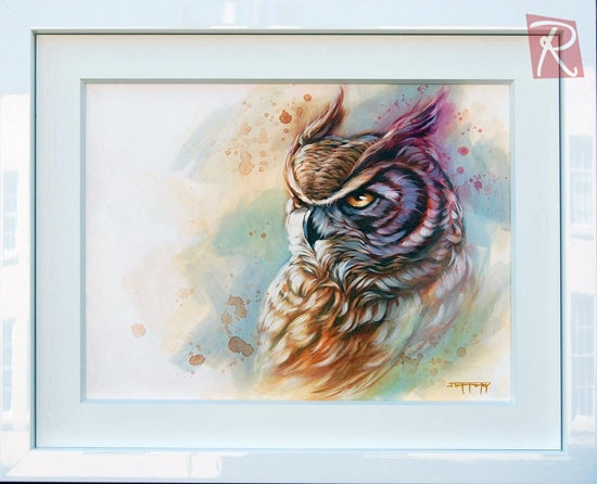 Picture of Ollie Owl