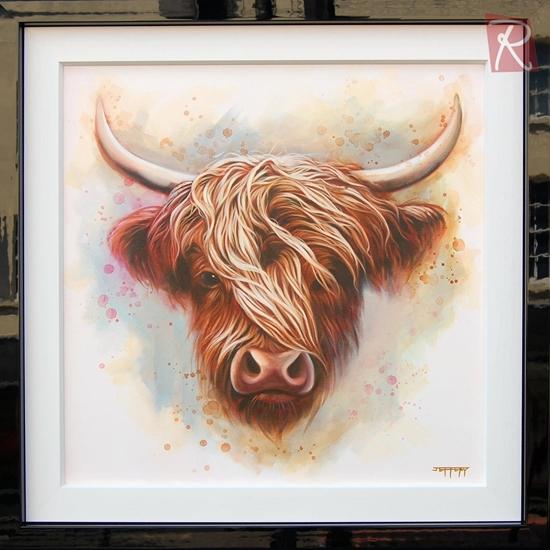 Picture of Callum' Highland Cow