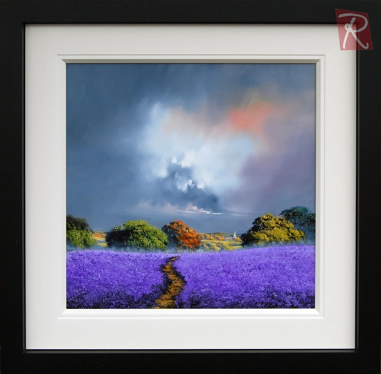 Picture of Lavender Fields Forever