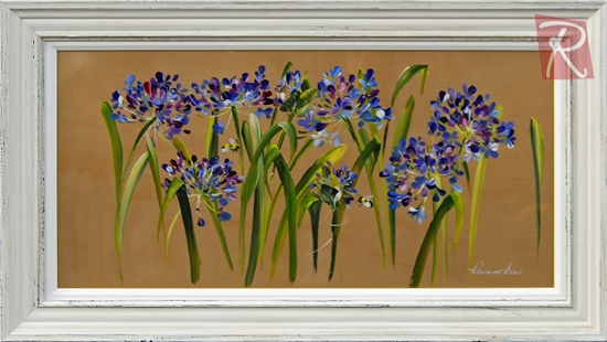 Picture of Agapanthus